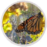 Monarch On The Dunes  Round Beach Towel