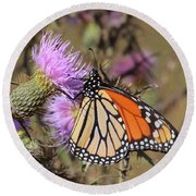 Monarch On Thistle II Round Beach Towel