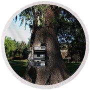 Money Tree . 7d9817 Round Beach Towel
