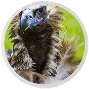 Monk Vulture 5 Round Beach Towel