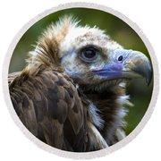 Monk Vulture Round Beach Towel