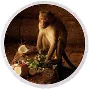 Monkey And Coconut Round Beach Towel