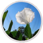 Moonflower Rising Round Beach Towel