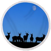 Moonlighting Round Beach Towel