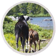 Moose Ends Baxter State Park Maine Round Beach Towel