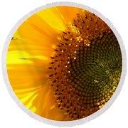 Morning Dew On Sunflower Round Beach Towel