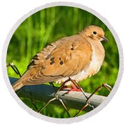 Morning Dove II Photoart Round Beach Towel