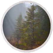 Morning Fall Colors Round Beach Towel