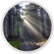 Morning Forest In Fog Round Beach Towel