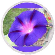 Morning Glory Fire Round Beach Towel