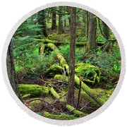 Moss And Fallen Trees In The Rainforest Of The Pacific Northwest Round Beach Towel