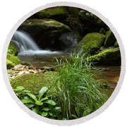 Moss And Water And Ambience Round Beach Towel