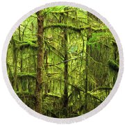 Moss-covered Trees Round Beach Towel