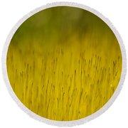Moss In Yellow Round Beach Towel