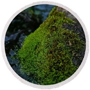 Mossy River Rock Round Beach Towel