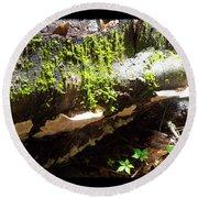 Mossy Waterfall On Mushroom Rock Round Beach Towel
