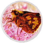 Moth Two Round Beach Towel