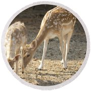 Mother And Child V2 Round Beach Towel