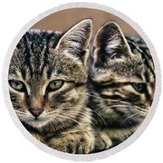 Mother And Child Wild Cats Round Beach Towel