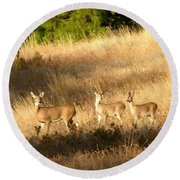 Mother And Twins Round Beach Towel