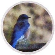 Mountain Bluebird Painterly Round Beach Towel
