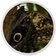 Mournful Owl Butterfly Round Beach Towel