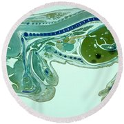 Mouse Embryo Round Beach Towel