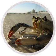 Mr. Crabs Round Beach Towel