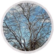 Mulberry Tree In Snow Round Beach Towel