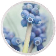 Muscari Round Beach Towel