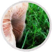 Mushroom And Dewdrops Round Beach Towel