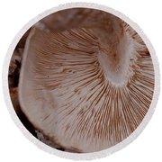 Mushroom Gills Round Beach Towel