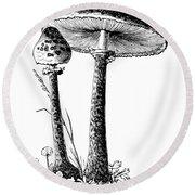 Mushroom: Parasol Agaric Round Beach Towel