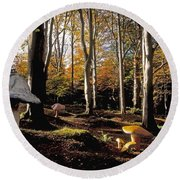 Mushrooms In A Forest Round Beach Towel