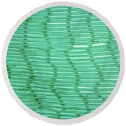 Mussel Gill Lm Round Beach Towel