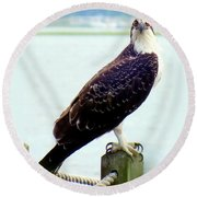 My Feathered Friend Round Beach Towel