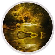 Mystery In Forest Round Beach Towel