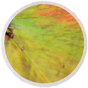 Natural Abstract 42 Round Beach Towel