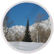 Nature's Christmas Tree Round Beach Towel