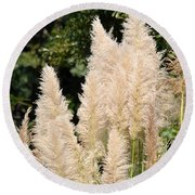 Nature's Feather Dusters Round Beach Towel