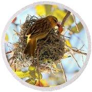 Nesting Instinct Round Beach Towel by Carol Groenen