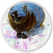 New Kitty Blue Round Beach Towel