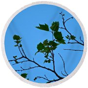 New Leaves Round Beach Towel