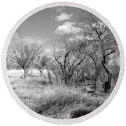New Mexico Series - Bare Beauty Round Beach Towel
