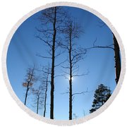 New Mexico Series - Bare Tree Sky  Round Beach Towel