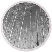 New Mexico Series - Leaf Free Black And White Round Beach Towel