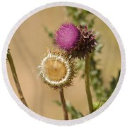 New Mexico Thistle II Round Beach Towel