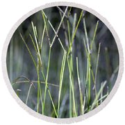 Night Walk Through The High Grass Round Beach Towel