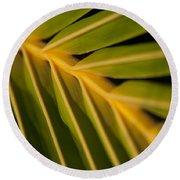 Niu - Cocos Nucifera - Hawaiian Coconut Palm Frond Round Beach Towel