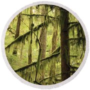 Northwest Mossy Tree Round Beach Towel